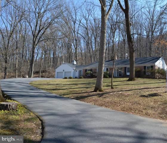 75 Scarlet Oak Court, FRONT ROYAL, VA 22630 (#VAWR2000012) :: Advance Realty Bel Air, Inc