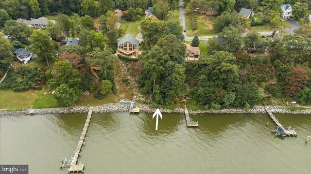 Turkey Point Road, NORTH EAST, MD 21901 (#MDCC2000017) :: ExecuHome Realty