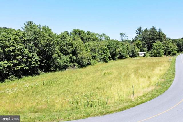0 Long Stretch Road, PINE GROVE, PA 17963 (#PASK2000042) :: The Joy Daniels Real Estate Group