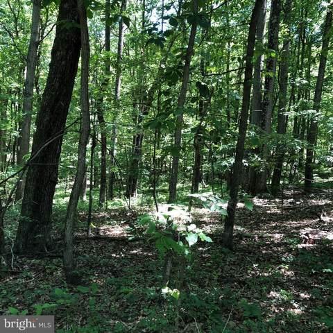 Rock Creek Trail, AUGUSTA, WV 26704 (#WVHS2000016) :: CENTURY 21 Core Partners