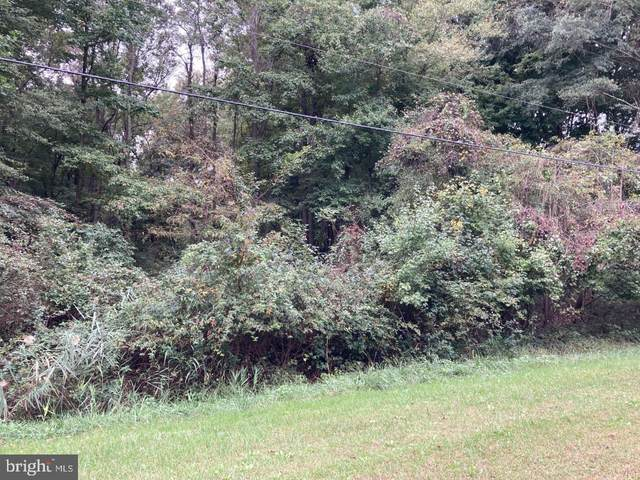 Lot 60, 61 And 62 Buck Neck Landing Road, CHESTERTOWN, MD 21620 (#MDKE2000031) :: Gail Nyman Group
