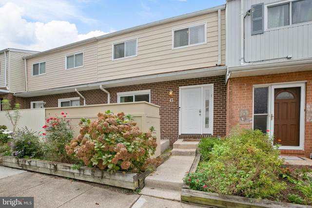 6 Poinsettia Court, BALTIMORE, MD 21209 (#MDBC2000627) :: The Mike Coleman Team