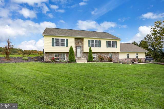 65 Windy Hill Road, SHERMANS DALE, PA 17090 (#PAPY2000047) :: Ramus Realty Group