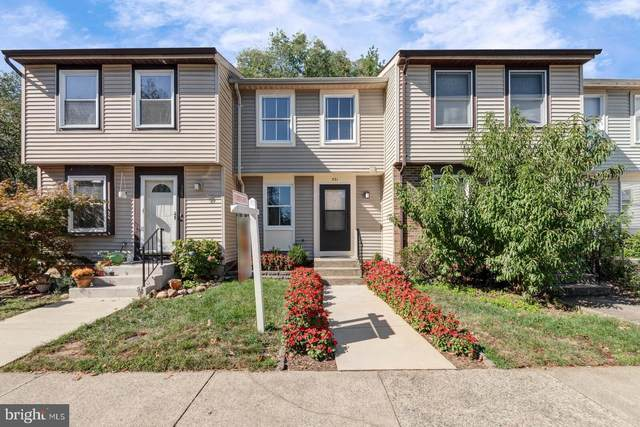 531 Brethour Court, STERLING, VA 20164 (#VALO2000603) :: Pearson Smith Realty