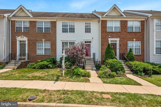 45551 Lake Haven Terrace, STERLING, VA 20165 (#VALO2000916) :: Charis Realty Group