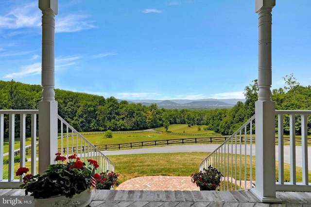 353 Parkside View Dr, BROWNTOWN, VA 22610 (#VAWR2000174) :: Nesbitt Realty
