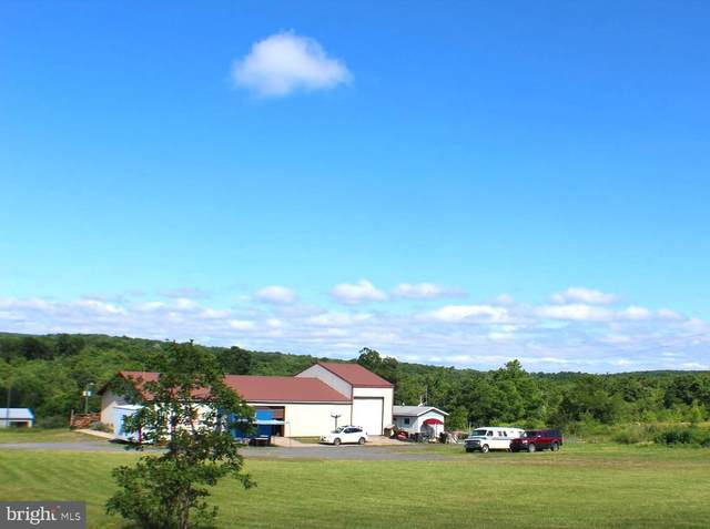 146 & 190 Power Station Highway, MOUNT STORM, WV 26739 (#WVGT2000016) :: AJ Team Realty