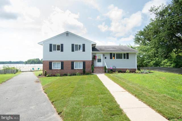 1013 Willowmere Lane, CAMBRIDGE, MD 21613 (#MDDO2000122) :: Peter Knapp Realty Group