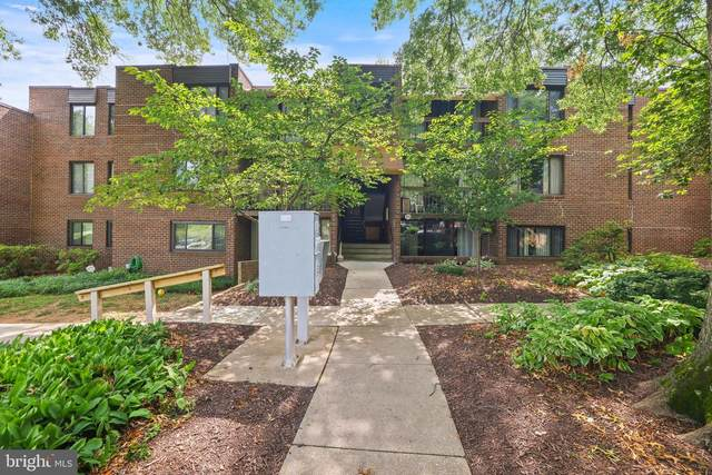 8703 Hayshed Lane #13, COLUMBIA, MD 21045 (#MDHW2001202) :: Shawn Little Team of Garceau Realty