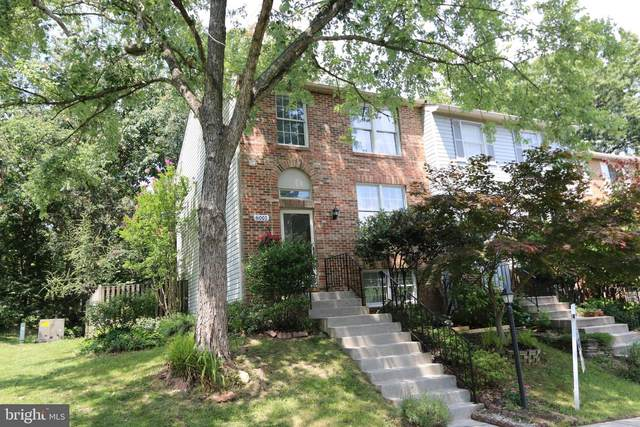 6001 Chicory Place, ALEXANDRIA, VA 22310 (#VAFX2006652) :: Debbie Dogrul Associates - Long and Foster Real Estate