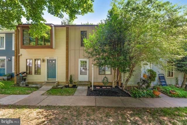 10749 Lester Street, SILVER SPRING, MD 20902 (#MDMC2004812) :: Charis Realty Group