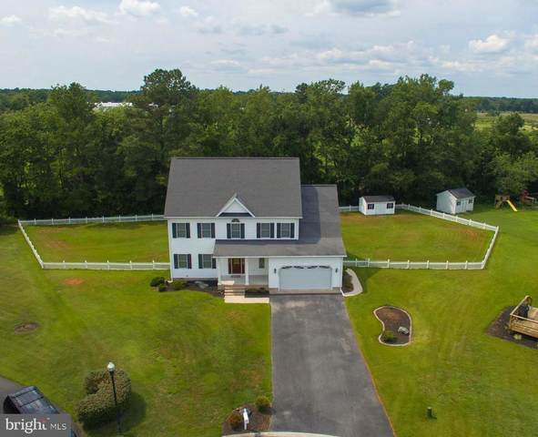 102 Misty Court, FRUITLAND, MD 21826 (#MDWC2000460) :: Integrity Home Team