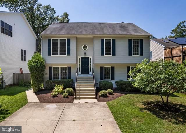 5944 1ST Street, DEALE, MD 20751 (#MDAA2003294) :: Great Falls Great Homes