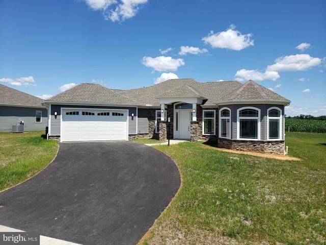 20 Ridley Lane, CARLISLE, PA 17015 (#PACB2001130) :: The Joy Daniels Real Estate Group
