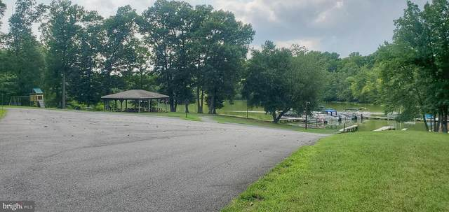 Lot 3 and 4 Bien Ven Harness Ln., MINERAL, VA 23117 (#VALA2000216) :: Debbie Dogrul Associates - Long and Foster Real Estate