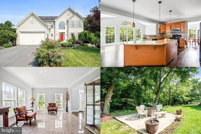 226 Stephens Run Street, STEPHENS CITY, VA 22655 (#VAFV2000658) :: Crossman & Co. Real Estate