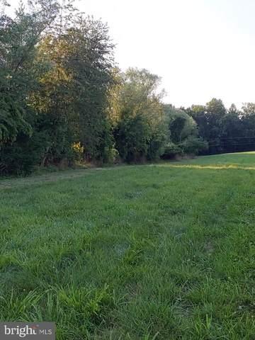 Lot B Twin Oaks Lane, CULPEPER, VA 22701 (#VACU2000444) :: Advon Group
