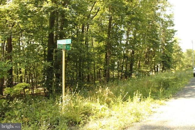526 Raccoon Drive, WINCHESTER, VA 22602 (#VAFV2000702) :: Crossman & Co. Real Estate