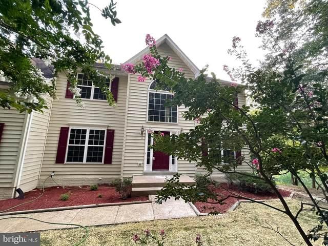 813 Winterberry Drive, FREDERICKSBURG, VA 22405 (#VAST2001460) :: RE/MAX Cornerstone Realty