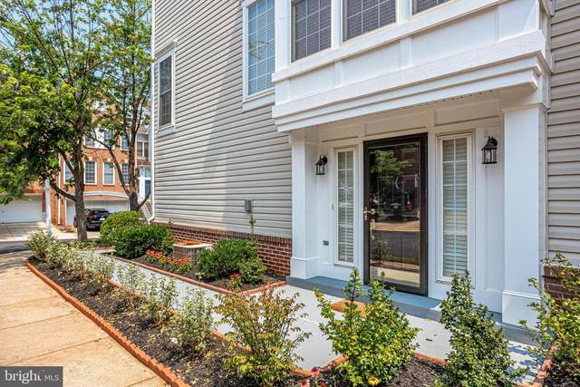 20866 Cosworth Terrace, STERLING, VA 20165 (#VALO2003820) :: Charis Realty Group