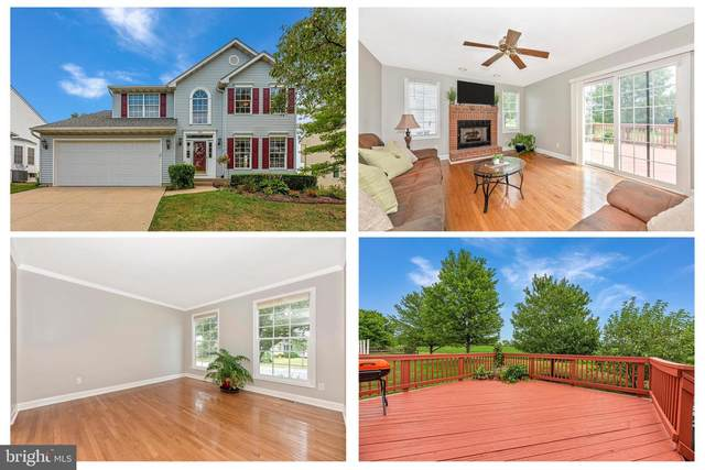 606 Humberson Lane, FREDERICK, MD 21703 (#MDFR2002750) :: Bruce & Tanya and Associates