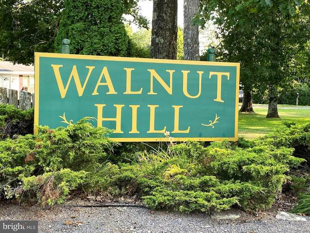Walnut Dr, Lot 17, FROSTBURG, MD 21532 (#MDGA2000474) :: Dart Homes