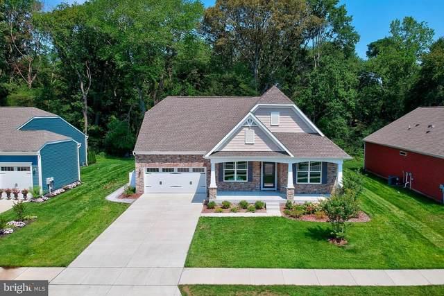11078 Greenview Ave, LEWES, DE 19958 (#DESU2003290) :: Colgan Real Estate