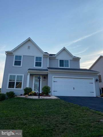 435 Chestnut Way, NEW CUMBERLAND, PA 17070 (#PAYK2003592) :: The Heather Neidlinger Team With Berkshire Hathaway HomeServices Homesale Realty