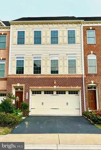 42603 Offenham Terrace, CHANTILLY, VA 20152 (#VALO2005162) :: Bic DeCaro & Associates