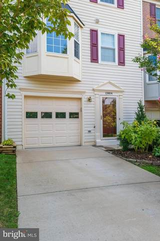 13804 Rampant Lion Court, CENTREVILLE, VA 20120 (#VAFX2014480) :: Debbie Dogrul Associates - Long and Foster Real Estate