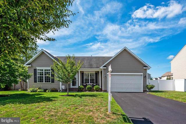 178 Meadow Brook Way, CENTREVILLE, MD 21617 (#MDQA2000710) :: Colgan Real Estate