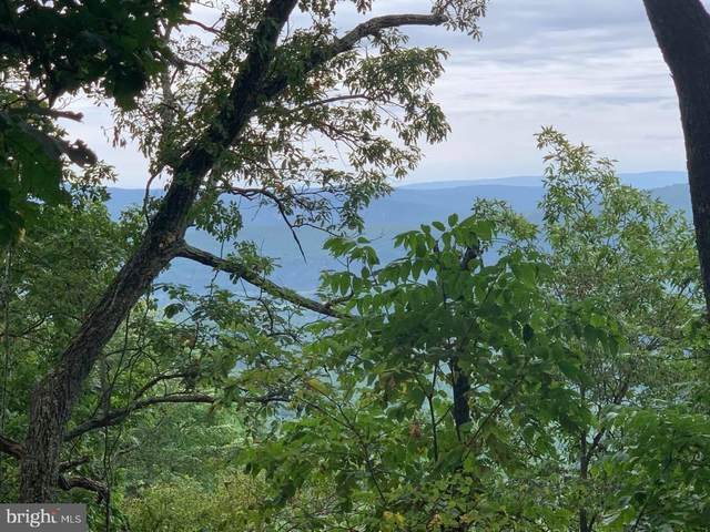 Lot 34, Mountain Top Rd, PAW PAW, WV 25434 (#WVHS2000366) :: CENTURY 21 Core Partners