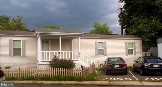 7855 Eagle Avenue, ALEXANDRIA, VA 22306 (#VAFX2015182) :: RE/MAX Cornerstone Realty