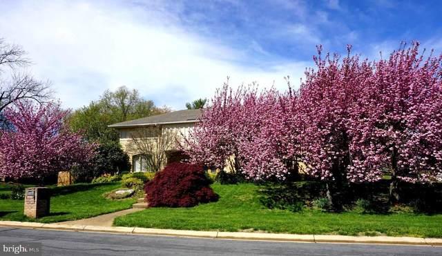 9901 Bluegrass Road, POTOMAC, MD 20854 (#MDMC2011066) :: The Vashist Group