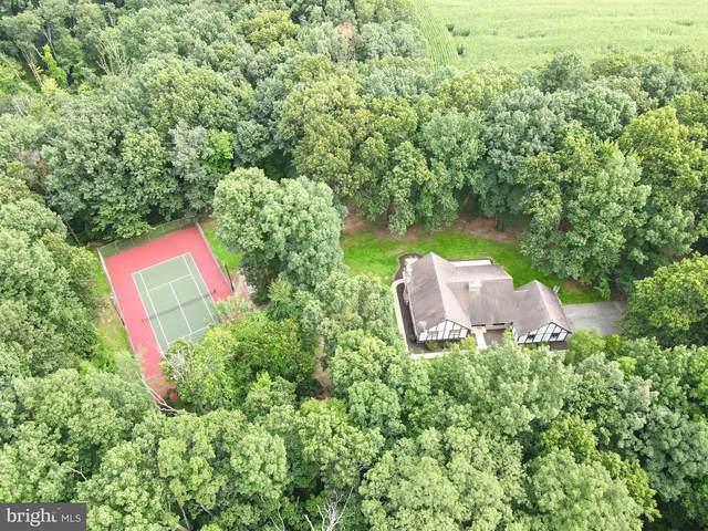 65 Oak Ridge Drive, HALIFAX, PA 17032 (#PADA2002584) :: The Joy Daniels Real Estate Group
