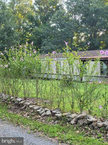 1267 Bears Lope Lane, GREAT CACAPON, WV 25422 (#WVMO2000354) :: Realty Executives Premier