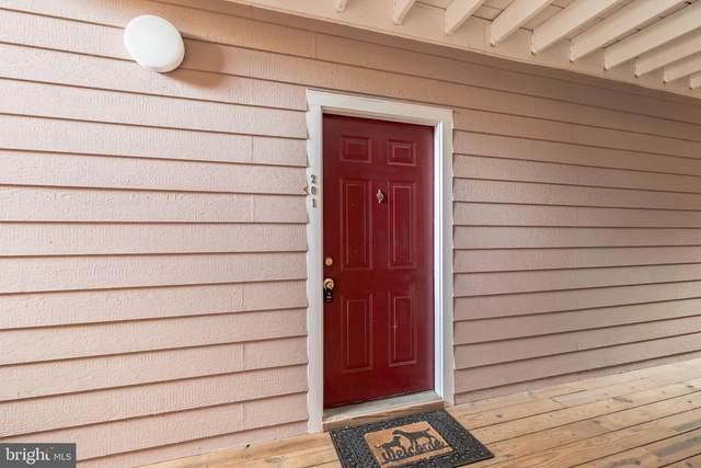 21013 Timber Ridge Terrace #201, ASHBURN, VA 20147 (#VALO2006406) :: The Maryland Group of Long & Foster Real Estate