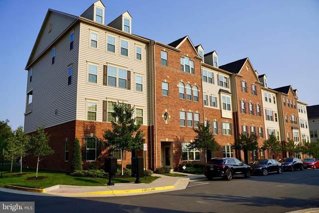 26030 Braided Mane Terrace, ALDIE, VA 20105 (#VALO2006834) :: Peter Knapp Realty Group