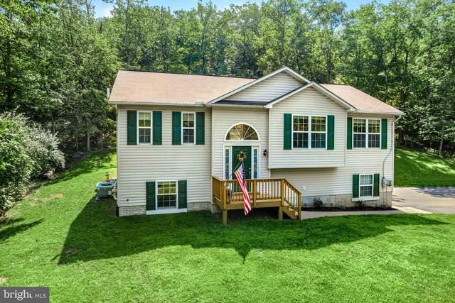 65 Ben Davis Drive, LINDEN, VA 22642 (#VAWR2000746) :: New Home Team of Maryland