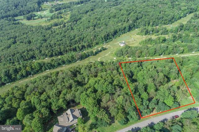 93 Lower Camp Road, MC HENRY, MD 21541 (#MDGA2000840) :: AJ Team Realty
