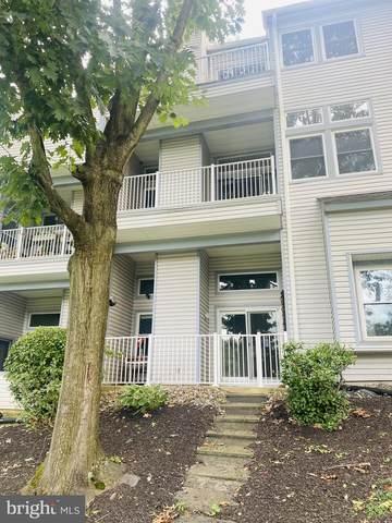 4603 Birch Circle, WILMINGTON, DE 19808 (#DENC2006186) :: Linda Dale Real Estate Experts