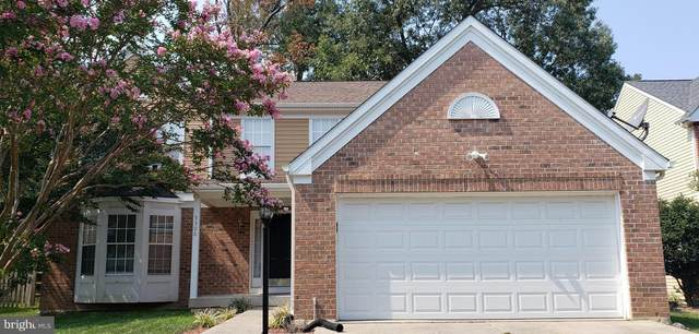 5306 Moray Court N #5306, WALDORF, MD 20603 (#MDCH2003486) :: The Putnam Group