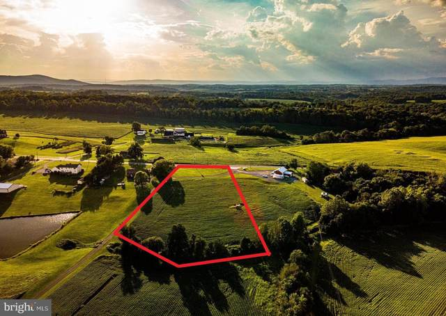 2461 Green Valley Road, IJAMSVILLE, MD 21754 (#MDFR2005610) :: Murray & Co. Real Estate