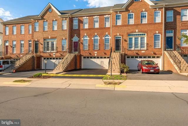 42110 Tanzanite Terrace, ALDIE, VA 20105 (#VALO2008056) :: Bic DeCaro & Associates