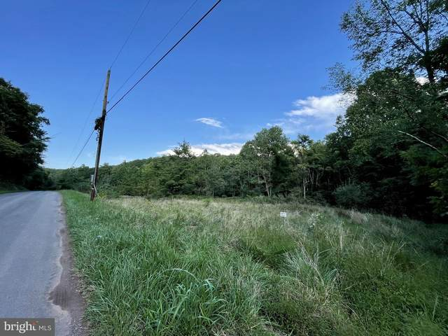 1246 Critton Owl Hollow Road, PAW PAW, WV 25434 (#WVHS2000522) :: Dart Homes