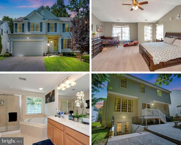 35273 Balmoral Drive, LOCUST GROVE, VA 22508 (#VAOR2000766) :: The Maryland Group of Long & Foster Real Estate