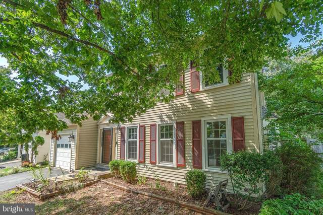 21051 Lowell Court, STERLING, VA 20164 (#VALO2008274) :: Realty Executives Premier