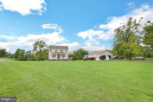 168 Savannah Drive, STRASBURG, VA 22657 (#VASH2000936) :: Integrity Home Team