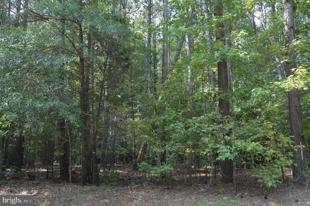 Spruce Drive, MINERAL, VA 23117 (#VALA2000576) :: Debbie Jett
