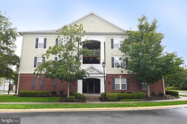 42435 Hollyhock Terrace #202, ASHBURN, VA 20148 (#VALO2008812) :: Monarch Properties